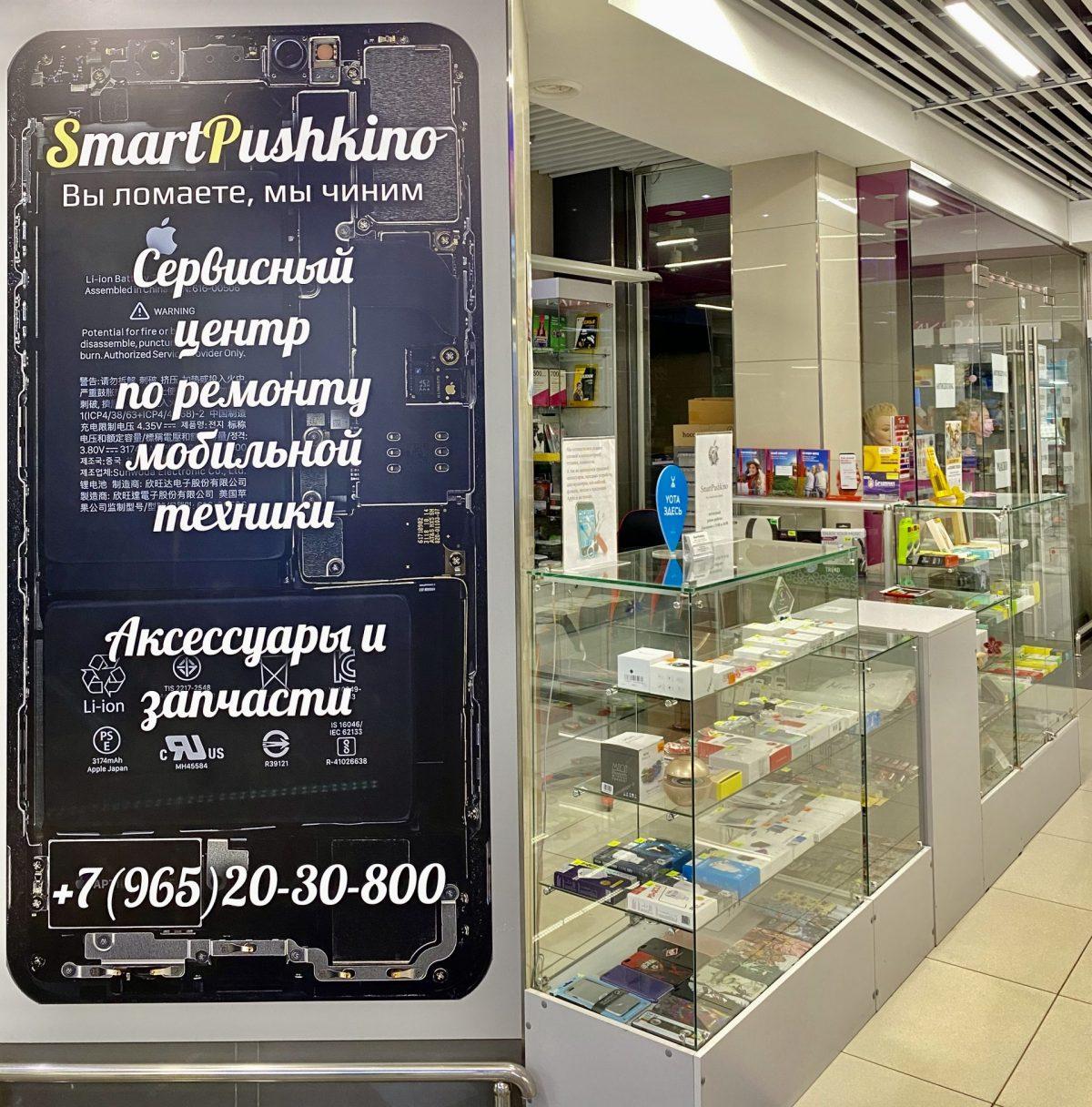 Smart Pushkino